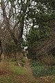 51-101-5044 Одеський ботанічний сад.jpg