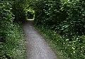 5 Wanderweg NSG WAF017 Bergeler Wald.jpg