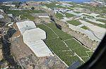 A0179 Tenerife, banana plantations aerial view.jpg