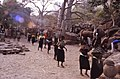 ASC Leiden - W.E.A. van Beek Collection - Dogon daily life 02 - Beer for the diggers- the women of the age groups bring the beer for the meal, Tireli, Mali 1983.jpg