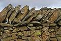 A drystane dyke on Fastheugh Hill - geograph.org.uk - 1134672.jpg