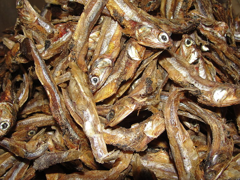 Random Fact Dried Fish