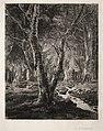 Adolphe Théodore Jules Martial Potémont - À Pierrefonie - 1921.990 - Cleveland Museum of Art.jpg