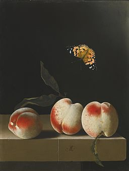 Adriaen Coorte - Three peaches on a stone ledge with a Painted Lady butterfly