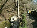 Afon Peris - geograph.org.uk - 358975.jpg