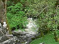Afon Twrch at Pont y Pandy - geograph.org.uk - 432767.jpg