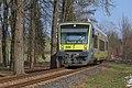 Agilis-Zug in Laineck.jpg