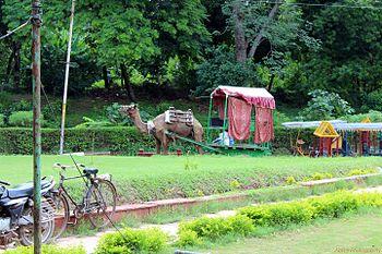 Agra greenery.jpg