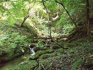 Kyoto Tamba Kogen Quasi-National Park - Image: Akazaki higashidani