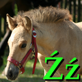 Alfabet zwierząt - literka Ź.png