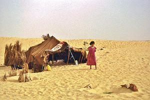 algerian nomads