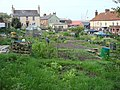 Allotments seen from Church Street - geograph.org.uk - 787912.jpg
