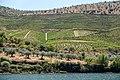 Alto Douro Vinhateiro DSC00311 (36492384474).jpg