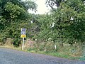 Alvecote Woods - geograph.org.uk - 566145.jpg