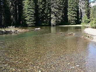 Bar (river morphology) - Gravel bar in the American River, Washington, United States.