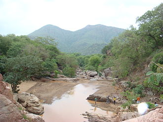 Tourism in Vellore - Amirthi Forest and Zoological Park