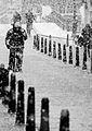 Amsterdam winter-27 (8460112791).jpg