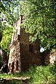 An imitative castle ruins at Jumprava - panoramio.jpg