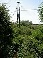 Anderson, River Winterborne - geograph.org.uk - 1374175.jpg