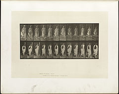 Animal locomotion. Plate 71 (Boston Public Library).jpg