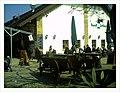 April Parc Natural Mundenhof Freiburg expropiated Baron Manors - Master Wildlife ^ Zoo Photography 2013 - panoramio (30).jpg