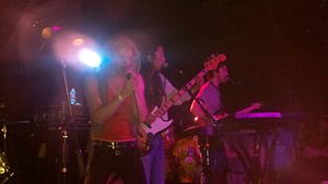 Before Today - Ariel Pink's Haunted Graffiti performing in 2010