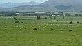 Athol-Five Rivers Hwy, South Island (482974) (9482099481).jpg