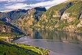 Aurlandsfjorden frå Snøvegen.jpg