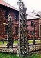 Auschwitz, 21.7.1993r.jpg