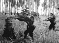 Australian assault on pillbox, January 1943, Papua, Giropa Point.jpg