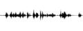 B+W sound file.tiff