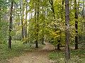 BRZEZINY - PIECZYSKA 16 - panoramio.jpg