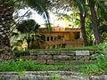 Backyard (356384920).jpg