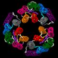 Bacteriorhodopsin trimer.png