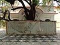 Bairi Sahib Tree Gurudwara Beri Sahib Sialkot Punjab Pakistan.jpg