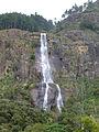 Bambarakanda Falls-Sri Lanka (5).jpg