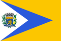 Bandeira Elisiário.png