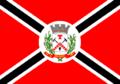 Bandeira Salinas.png