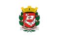 Bandeira da cidade de São Paulo (1950 - 1974).png