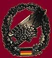 Barettabzeichen Fallschirmjäger Bw.jpg