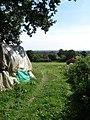 Barn Field - geograph.org.uk - 1450501.jpg