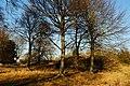 Barrows Near Stonehenge - geograph.org.uk - 1626611.jpg