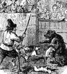 Bear-baiting in the 17th century.
