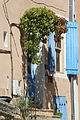 Beaumes-de-Venise Treille en façade.jpg