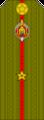 Belarus MIA—10 Junior Lieutenant rank insignia (Olive)—SR.png
