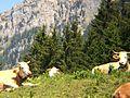 Berchtesgaden IMG 4990.JPG