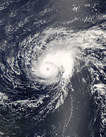 Hurricane Bertha near peak intensity]]
