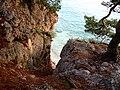 Between the rocks.jpeg