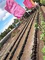 Bicol Strawberry Farm 2.jpg