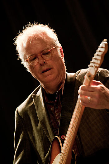 English: Bill Frisell, moers festival 2010